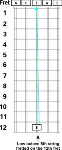 ronroco low octave 5th string tuning