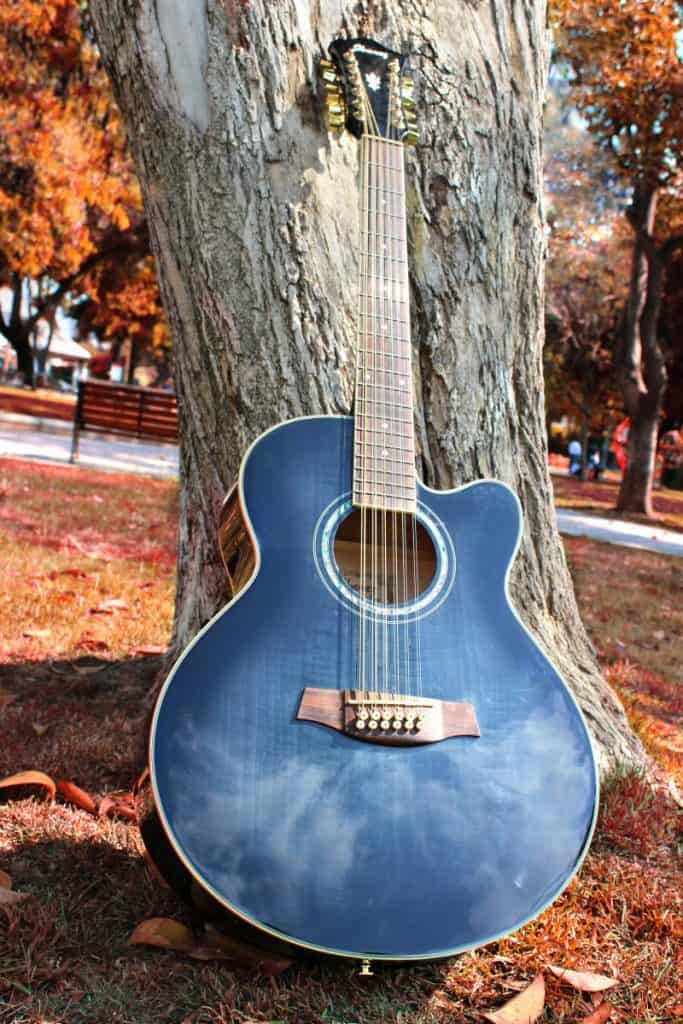 12 string guitar in a wood
